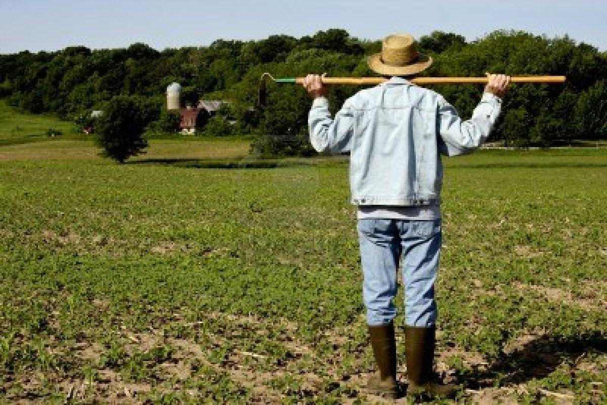 Agricoltore attivo: conterà il codice ATECO?