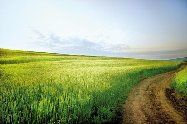Aree di interesse ecologico: alcuni chiarimenti circa la loro localizzazione