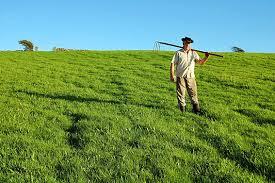 I giovani e il mondo agricolo