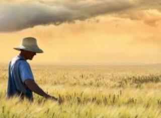 Il regime dei piccoli agricoltori nella nuova PAC: prime indiscrezioni