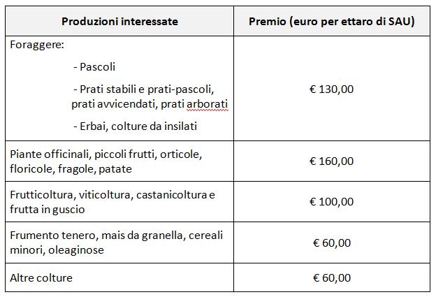 tabella-importi-premi