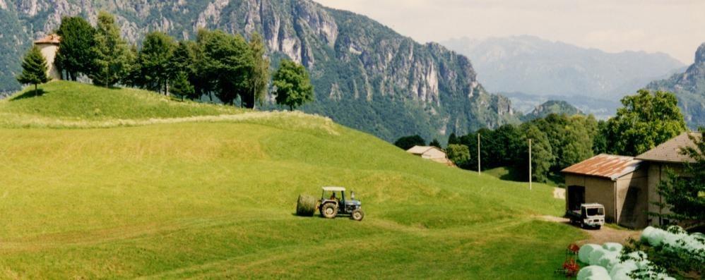 Novità anche per l'acquisto di terreni agricoli in montagna